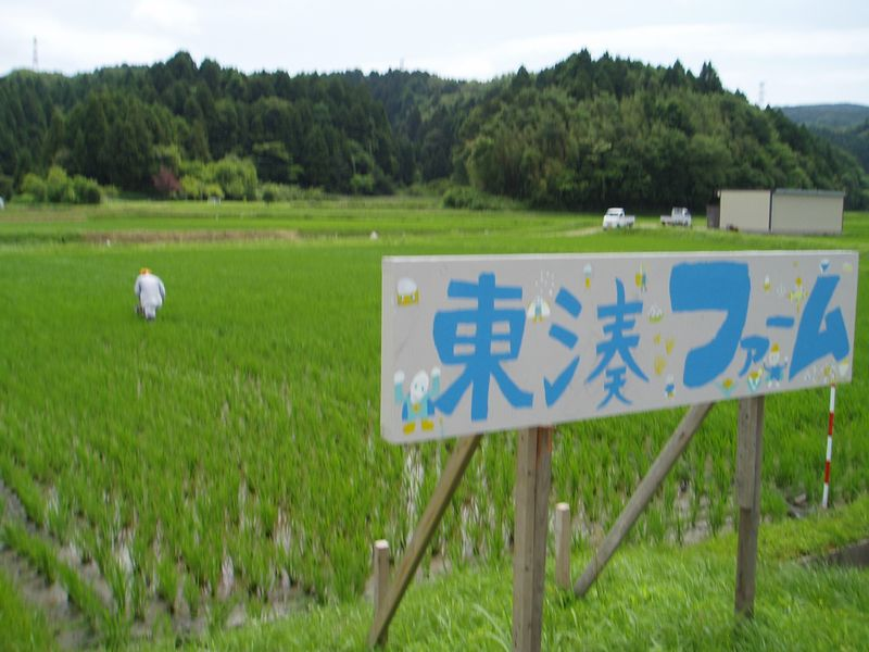 農場(東湊ファーム)